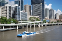 Brisbane's Citycats are a great way to get around