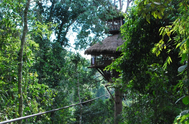 Tree house, Laos