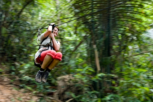 A guest at the 'Gibbon Experience' riding part of the 52 km. of zip lines in Bokeo, Laos.
