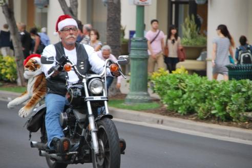 HAWAII 2012 117