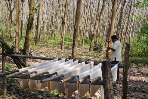 natural rubber drying