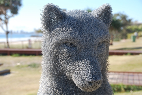 Wolf by Ivan Lovatt (QLD). Made of chicken wire.