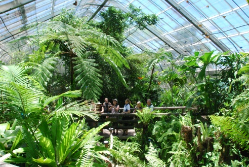 Inside the aviary.
