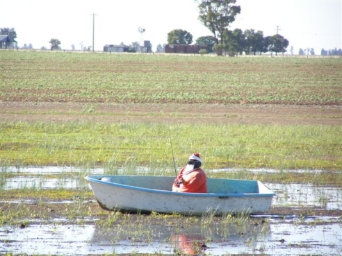 Fishing Santa, Newell Highway, NSW (after a lot of rain).